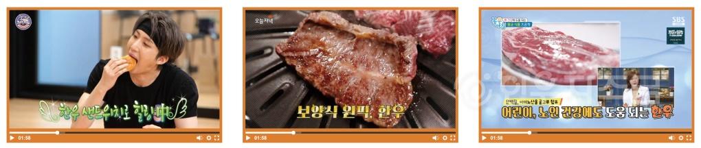 히_2009-한우-5.jpg
